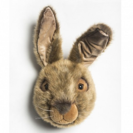 Hare trofæ - Brigbys